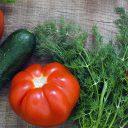 10 gezonde recepten – voor elke gelegenheid